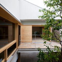 中庭/シンボルツリー/木製サッシ/庭・ガーデニングリフォーム/ベランダ 書斎から中庭を見ています。各部屋の窓から…