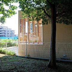 外観/緑/借景/スキップフロア/高低差/ファサード/... 裏側に公園のある住宅です。敷地にある高低…