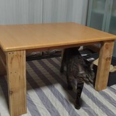 テーブルDIY/再利用リメイク/安い/弁当/日焼け/テーブル/... アフターからの逆画像ですが  少し前から…