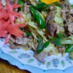 美味しい/焼そば/節約料理/一人暮らし 節約晩飯 焼そば 麺18円+税 肉小分け…