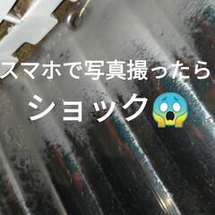 晩ご飯/バジル/ビックリ/穴無し洗濯槽/キャットタワー/猫との暮らし/... 昼から 気圧などで中々のアチコチのだるさ…(4枚目)