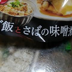 さば味噌煮/チンご飯/めまい/LIMIAごはんクラブ 今日は、朝からめまいで  昼食べてから …