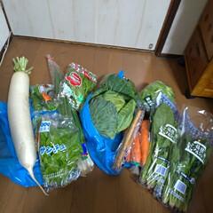 安い/買い物/野菜/土曜市 あまり行かないお店に買い物行ったら 店の…