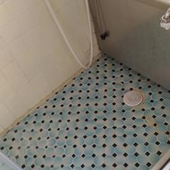 水漏れ/二階風呂場/おでかけ/リフォーム 二階風呂場 水漏れで 知り合いの業者さん…
