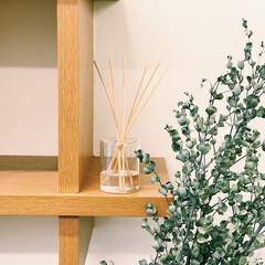 トレワ リードディフューザー JB ジャスミンブーケ 100ml リフィル 詰替用(部屋用)を使ったクチコミ「つぎ目のない吹きガラスが綺麗な、リードデ…」