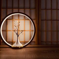 お花見/O Lamp/インドア花見/照明 おうちでお花見O Lamp