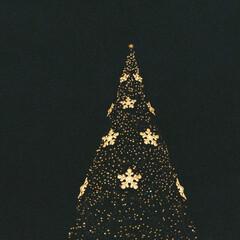 写ルンです/フィルムカメラ/film/film camera/ファインダー越しの私の世界/クリスマス2019 これは 世界から君だけが消えた夜 のお話…