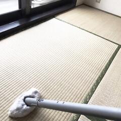 KARCHER SC1PM スチームクリーナー SC 1 プレミアム(スチームクリーナー)を使ったクチコミ「畳のお掃除は高温スチームがお勧め! 畳の…」