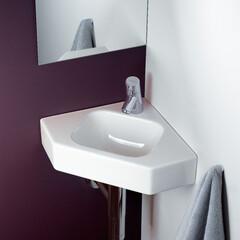 セラトレーディング/洗面ボウル/洗面/トイレ/寝室/水回り/... トイレや寝室、廊下などに手洗いコーナーを…