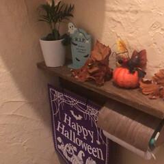 季節雑貨/トイレ/インテリア/100均/ダイソー/セリア/... 母仕様🌟 ハロウィン🎃 秋のおでかけがし…