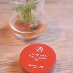 アンプルール AMPLEUR ラグジュアリーホワイト エマルジョンゲルEX 50g(乳液)を使ったクチコミ「花粉とマスクので荒れがちな肌の救世主 朝…」