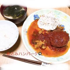 ハンバーグ 煮込みハンバーグ🍳 春雨スープ  煮込み…