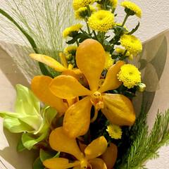 お彼岸/花 お彼岸用の花💐 こういう感じは、大好き✨