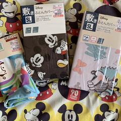 「#しまむら #Mickey 広告の品」(1枚目)