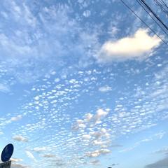 11月/ある日の/空 仕事終わり 何気に見上げた空はとても澄ん…