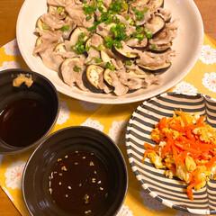 豚バラ肉/ナス/小口ネギ/人参/卵 今夜のメニューは  ・豚バラと茄子のチン…