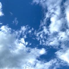あさ朝/晴れ⇔曇り/汗拭きタオル/折りたたみ傘/暮らし おはようございます‼︎  いよいよ梅雨入…