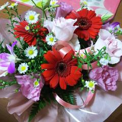 明日も頑張ろう/癒されます/赤のガーベラ お花を💕頂きました(*^^*) 赤のガー…
