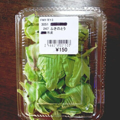 ふきのとう/春の恵み 農家の店で【ふきのとう】150円也👍️😁…
