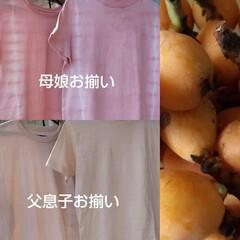 ハンドメイド/Tシャツ/びわの葉染め/草木染め/お揃いコーデ/雑貨/... お庭のびわの実が食べ頃♪ そして、びわの…