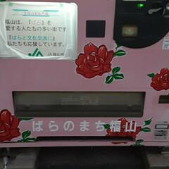 買い物に行く途中/👀📷✨/福山のマーク薔薇/福山市/自動販売機/回収ボックス 1枚目   自動販売機   派手でした❣…