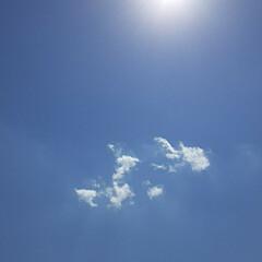 夏の様な暑さ/👀📷✨/昨日の空/雲が少なかった/空 おはようございます☺  9月9日(水) …