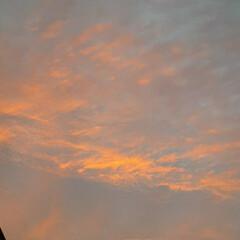 空 今の、福山の夕焼けです🎵  外階段を上が…