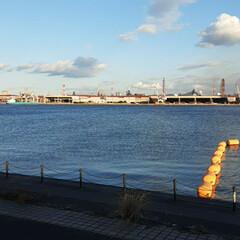 昨日の/福山港 ヨットハーバーなどを  ちょっと違う角度…