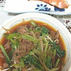 おうちごはん/節約/簡単 休みの日の、晩ご飯❗  ・鮭の塩焼き ・…