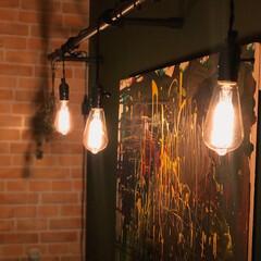 DIY/照明/プチプラ照明/プチプラ照明見つけた! エジソンバルブと塩ビパイプを使って照明を…