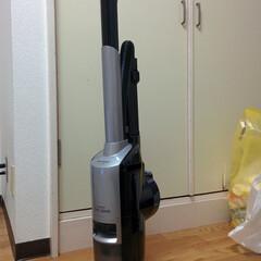 お掃除/掃除グッズ 最近手に入れた SHARPの名機 EC-…