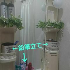 フェイクグリーン/洗面台/セリア/100均/収納/最近買った100均グッズ/... 古めな賃貸アパートの我が家の洗面台…。 …