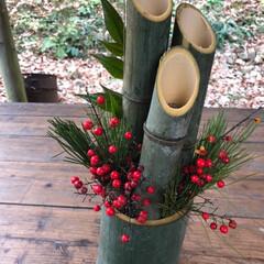 初めての門松作り お正月飾りを手作り/お正月2020 初めて森の中でお正月飾りを作りました。自…(1枚目)