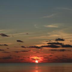 風景/夕日/海/沖縄/名護/Canon/... 初日の出ならぬ初日の入。 とても綺麗で見…