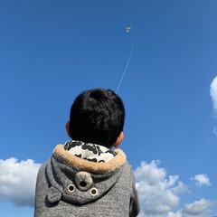 お正月/たこ揚げ/お正月2020 田舎に帰った時に初めての凧揚げをしました!