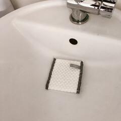 掃除/掃除アイテム好き/掃除アイテムマニア ホームセンターで洗面台掃除に丁度いいのを…