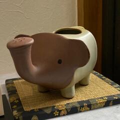 象/動物モチーフグッズ 象さんのセトモノの飾り物です❤️   何…