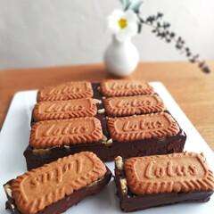 手作りケーキ/チョコレート/おうちカフェ/手作りお菓子/スイーツ/甘党大集合 🔸ロータスブラウニー🔸  ロングセラービ…