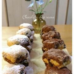 チョコ/チョコチップ/スコーン/手作りお菓子 🔸2色スコーン🔸  チョコチップ入りのス…