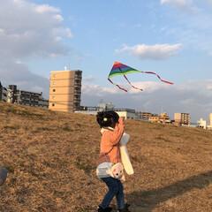 たこあげ/お正月2020 はじめての凧揚げに挑戦。(1枚目)