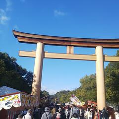 お正月2020 毎年行く奈良の橿原神宮に初詣に出かけた写…