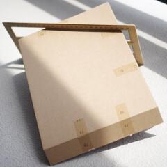 雑誌付録/再利用/エコ/簡易包装/段ボール バッグとかが小さく折りたたまれてる雑誌付…