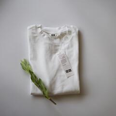 ユニクロ/プチプラ服/白Tシャツ/メンズアイテム/ユニクロユー/コスパ大 ファッションビルが閉まる前にかけこんで購…