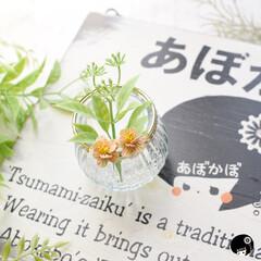 あぼかぼつまみ細工/ハンドメイド/レトロ/アンティーク オーダー品✨ 花びら1枚1枚を手染めして…(2枚目)