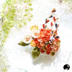 あぼかぼつまみ細工 アンティーク正絹の大輪と小花の髪飾り&フ…
