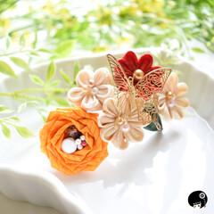 あぼかぼつまみ細工 絽を使った薔薇の第二弾✨  優雅に薔薇に…(1枚目)
