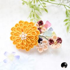 あぼかぼつまみ細工 太陽サンサン✨っていうイメージのお花が咲…(2枚目)