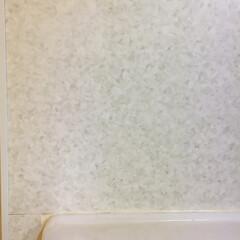 プチリフォーム/DAISO/リメイクシート/キッチン 我が家のキッチンの壁。 シンクの前に窓が…