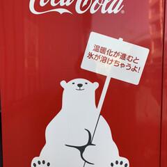 街の発見/Coca-Cola/自販機/暮らし コカコーラ自販機の側面を初めて見た気が。…