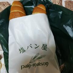 塩パン/ランチ 有名なパンを買って来ました
